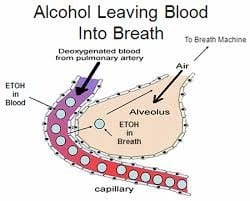 Blood Breath Partition Ratio in DWI Cases